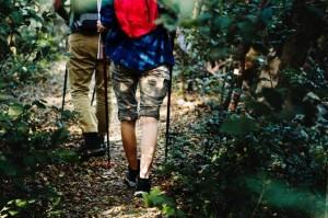 A imagem mostra duas pessoas fazendo trilha em uma mata