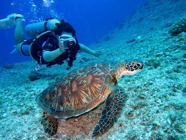 Mulher em mergulho no mar