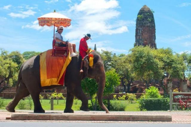 Pessoas realizando passeio em cima de um elefante na Tailândia